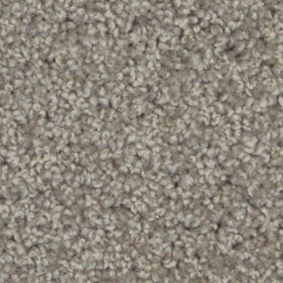 x carpet types pictures floor fresh best altered images on