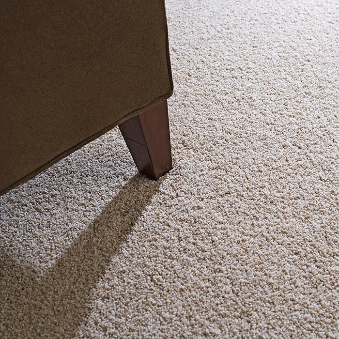 how to clean high traffic carpet best for areas and pets home the protect
