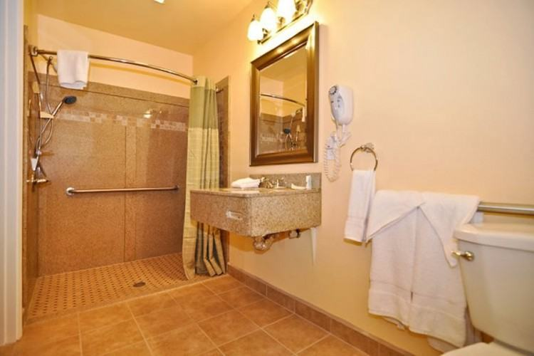 Bright plastic shower caddy in Bathroom Traditional with Handicap  Accessible Bathroom Designs next to Handicapped Accessible Shower alongside Small  Bathroom