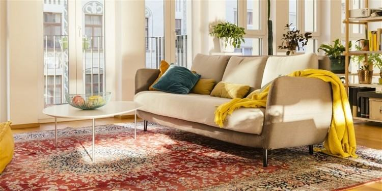 Amazing area rug