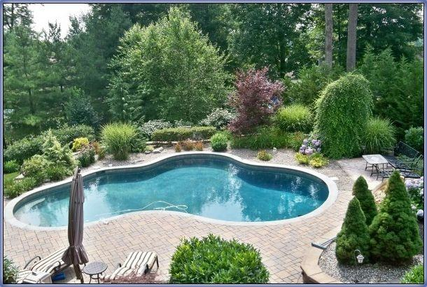 Simple And Neat Home Exterior Decoration Using Inground Pool Decks :  Cozy Image Of Backyard Landscaping
