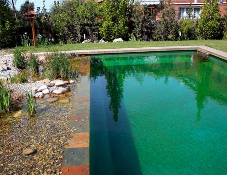 natural pool plans small natural swimming pool design plans