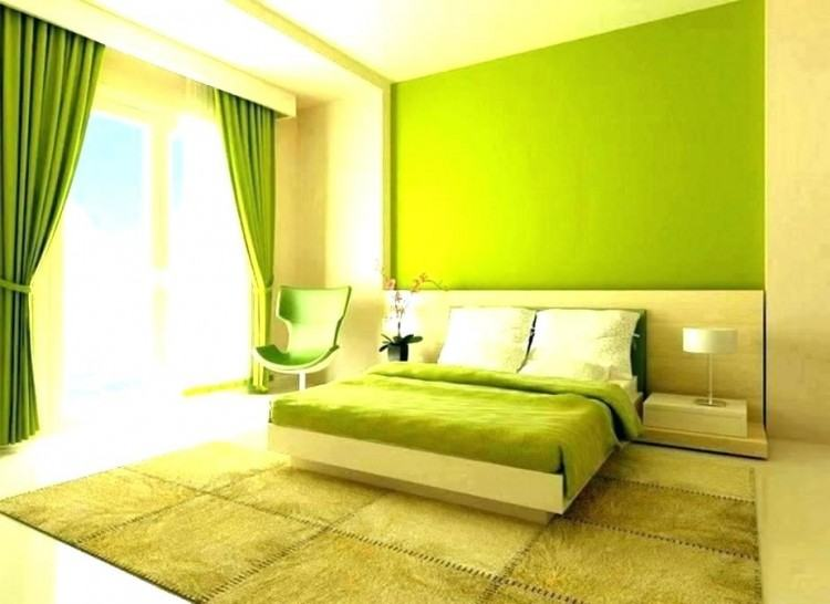 Full Size of Living Room Colors Ideas Pictures Grey Bedroom For Adults  Paint Color Pinterest Idea