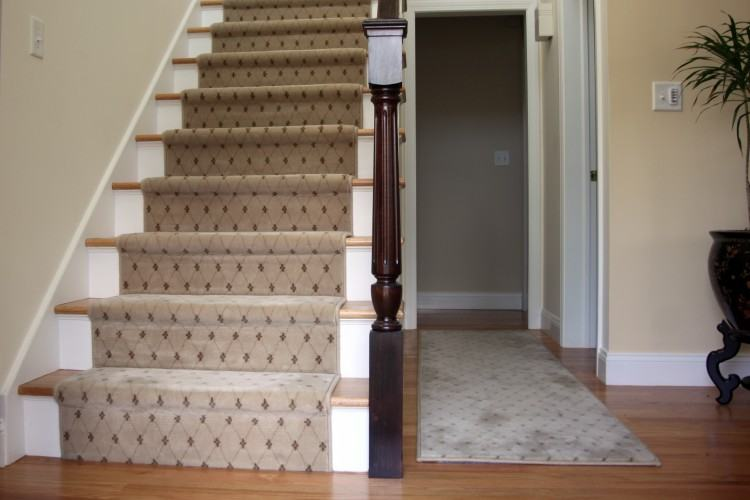 Full Size of Types Of Carpet Padding For Basement Kinds Cleaning Cleaners  Red Deer Cleaner Home